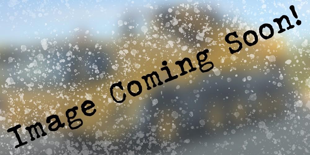 coming soon copy